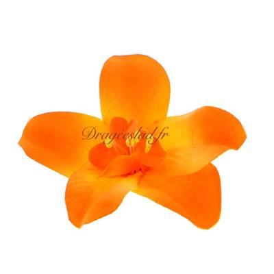 Orchidée orange x 10